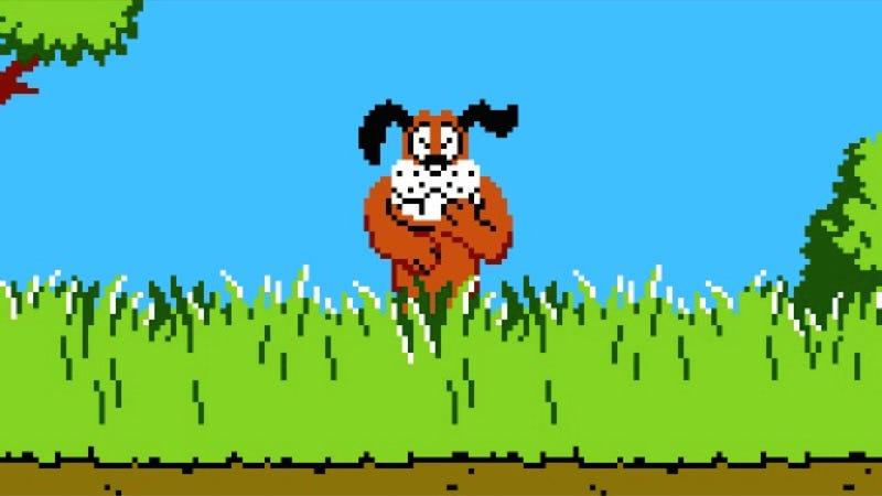 Illustration for article titled Asshole Dog Shoots Duck Hunter