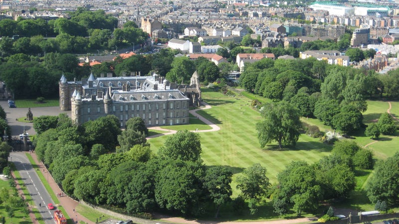 "Two ""extinct"" Wentworth elms have been discovered at Holyrood Palace. The free-standing tree to the right of the palace is one of them. (Image: Carol Walker/CC BY-SA 2.0)"