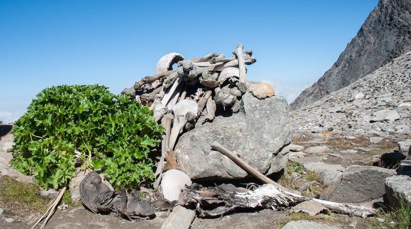 Algunos huesos y restos encontrados en el lago. Wikimedia Commons