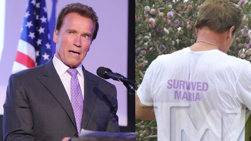 Illustration for article titled Schwarzenegger Debuts 'I Survived Maria' Shirt