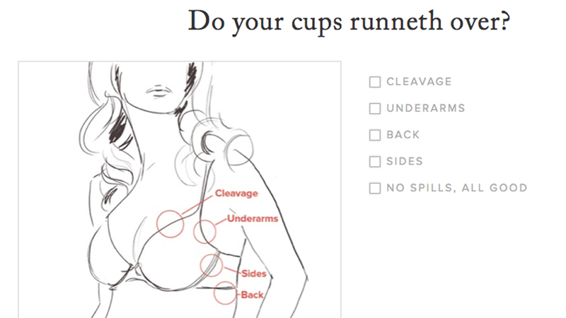 Illustration for article titled Would You Try This New 'Revelatory' Online Bra Shop?