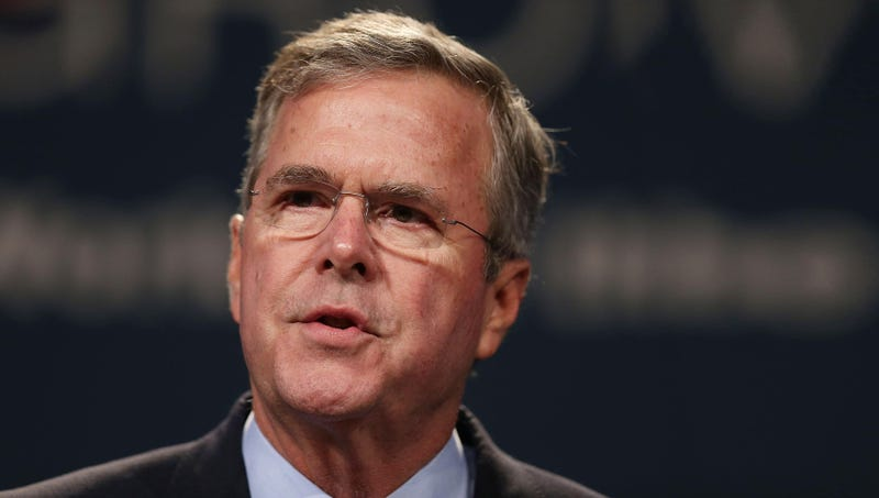 Illustration for article titled Candidate Profile: Jeb Bush