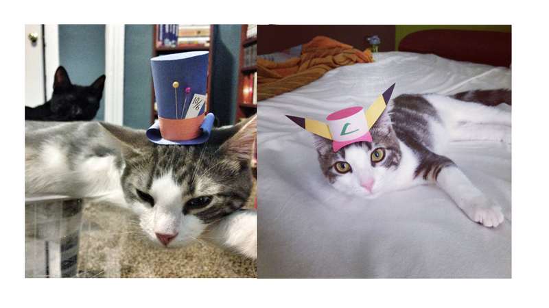Illustration for article titled Tiny Paper Hats Are The Next Big Thing In Cat Fashion