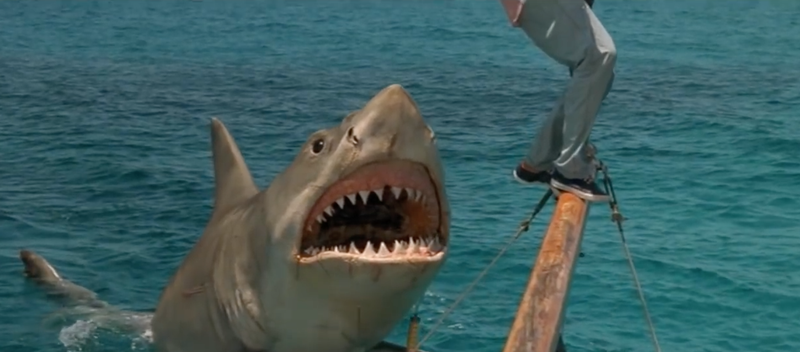 5 Best Worst Jaws Rip-Off Movies: Sharks, Orcas, & Bad Effects