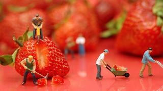 Illustration for article titled Healthy Meals Should Have Bigger Portions, Not Smaller Ones
