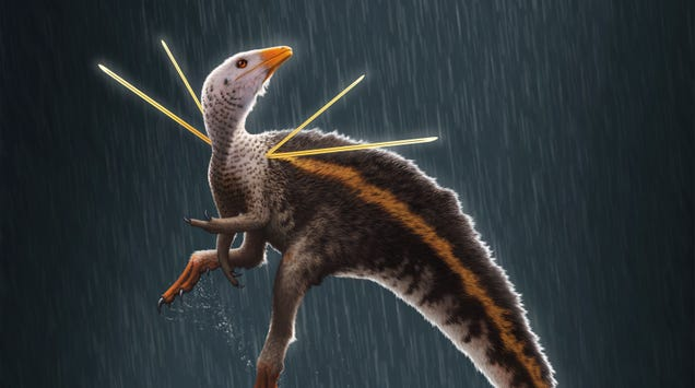 Fancy Dinosaur With Bizarre Shoulder Decorations Was the Peacock of the Cretaceous