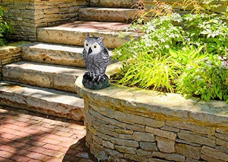 Premium Garden Scarecrow Owl | $11 | Daily Steals | Promo code KJOWL