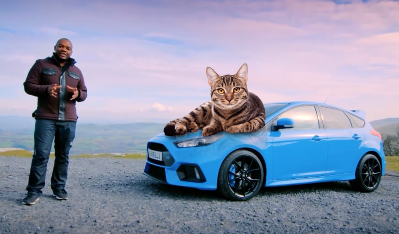 Illustration for article titled The Peculiar Saga Of Top Gear's Rory Reid And A Feral Cat