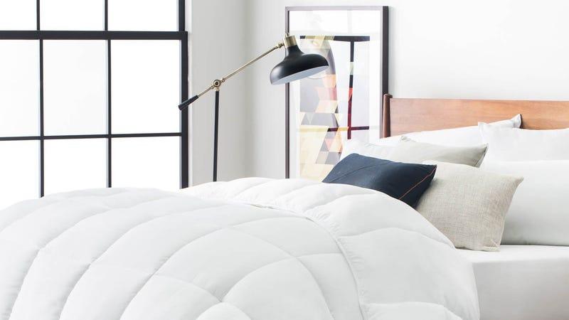 LUCID Down Alternative Comforter Gold Box | Amazon