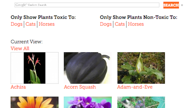 The ASPCAs Index Tells You If a Plant Is Safe for Pets Before You Buy