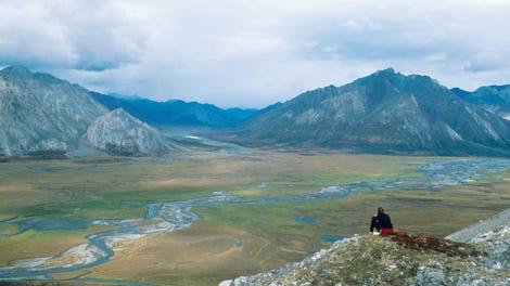 It Was 70 Degrees in Alaska This Week