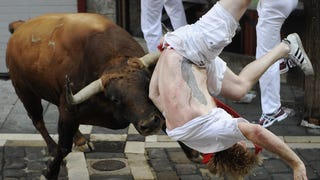 Look at These Idiots Voluntarily Getting Trampled by Bulls