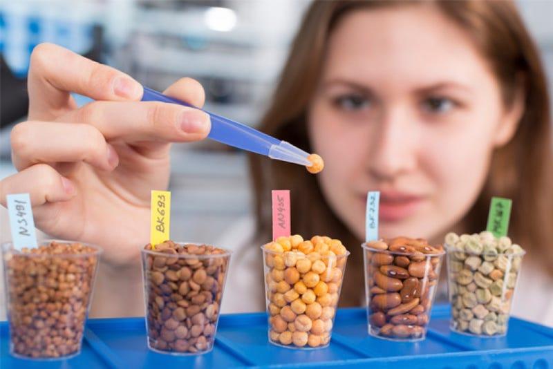 Illustration for article titled Online Food Science Career Schools