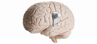 Illustration for article titled Scientists Have Located the Brain's On/Off Switch for Consciousness