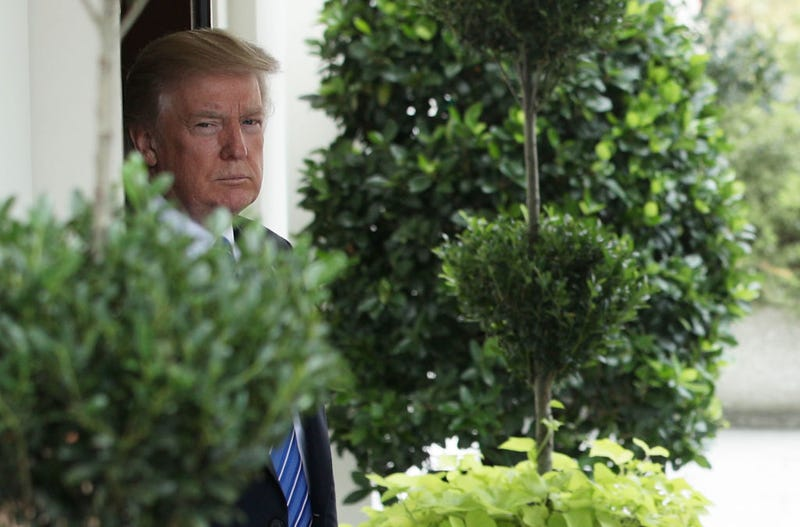 And he's not coming out of these shrubs until he gets one (Photo: Alex Wong/Getty Images)