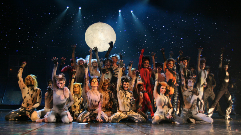 The cast of Cats from a 2007 production in Warsaw. Image via Wikipedia, shared through Creative Commons.