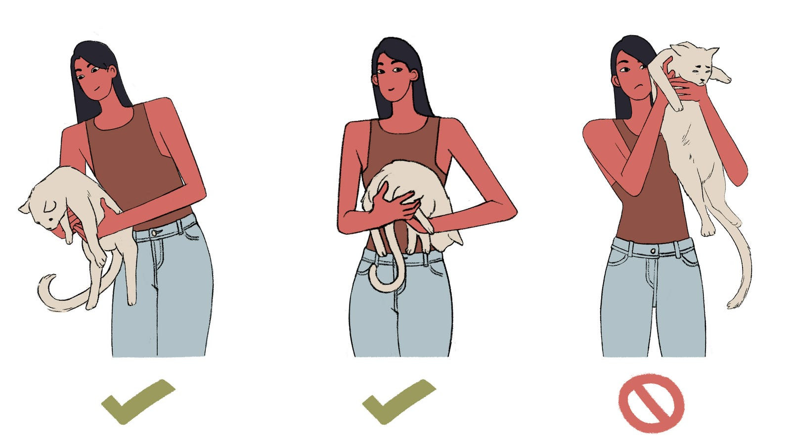 How to Hold a Cat
