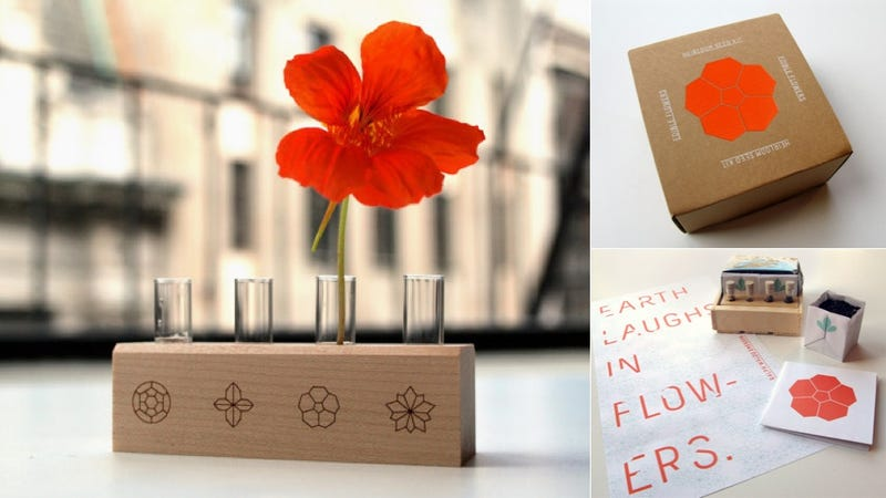 Illustration for article titled This All-In-One Kit Lets You Grow Flowers You Can Eat