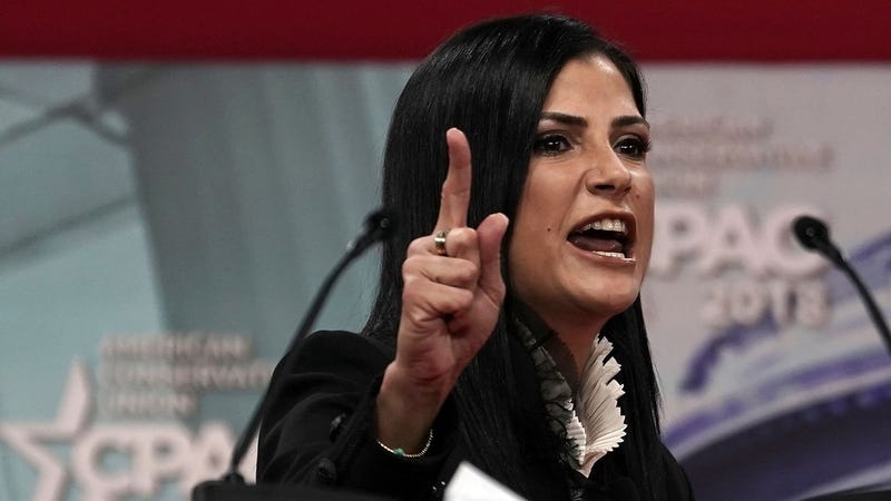NRA spokesperson Dana Loesch speaks during CPAC 2018 on February 22, 2018 (Getty)