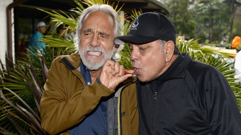 Illustration for article titled Everything is a lie: Cheech and Chong were sober on the set ofUp In Smoke