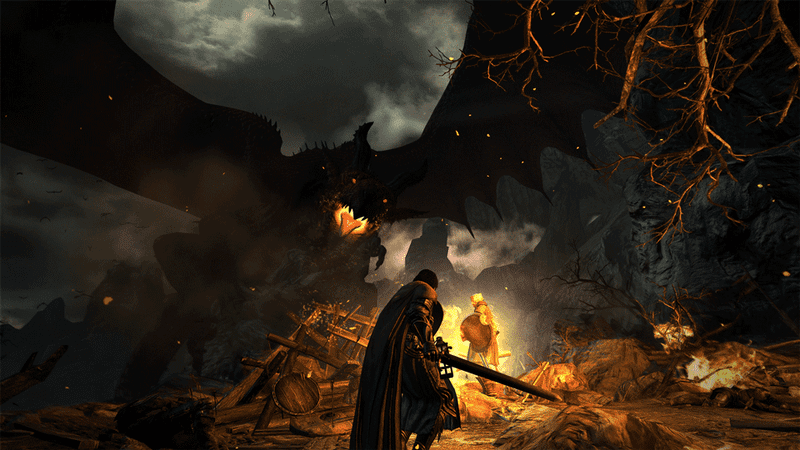Illustration for article titled Surprise, Dragon's Dogma Is Coming To PC