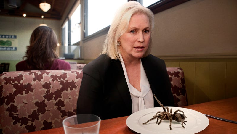 Illustration for article titled Bored Iowa Town Trying To Convince Kirsten Gillibrand It Local Tradition To Eat Live Tarantula