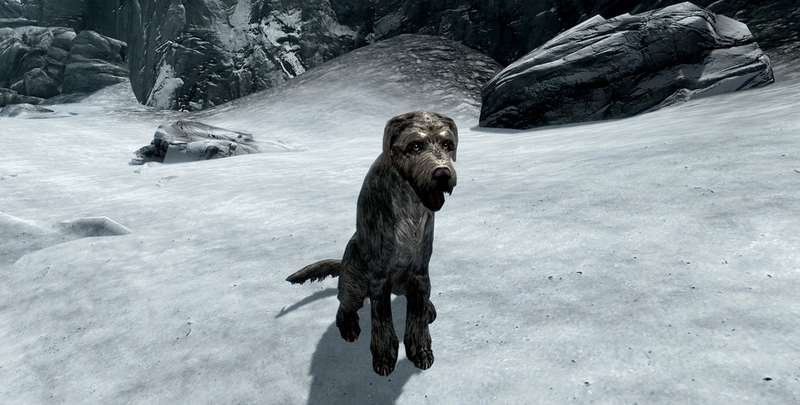 Skyrim Player Says He Went Through Hell Just To Adopt A Virtual Dog