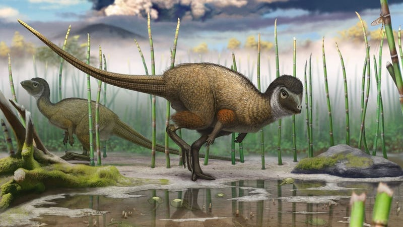 Illustration for article titled Dinosaur discovery suggests feathers widespread amongst dinosaurs