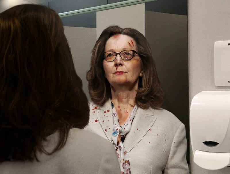 Illustration for article titled Anxious Gina Haspel Gives Self Little Pep Interrogation In Bathroom Mirror