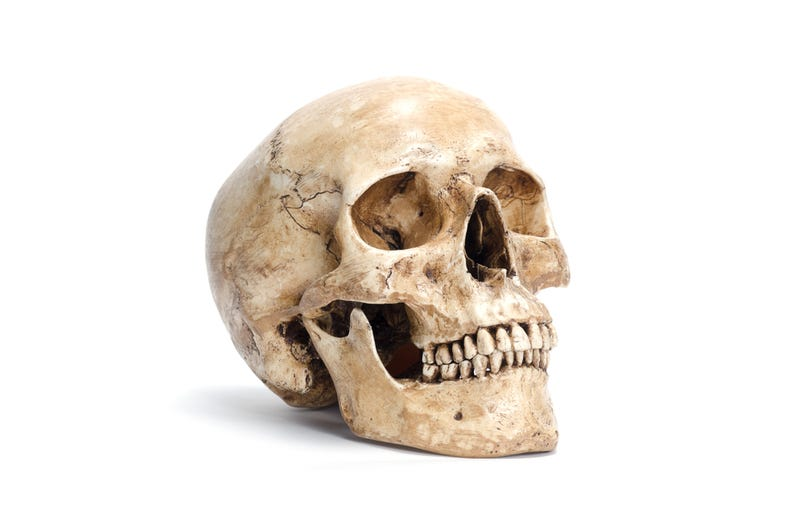 Modern Day Hamlet Finds Skull-Shaped Chip, Good Reminder ...