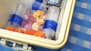 Reuse Plastic Water Bottles to Store Ice in Your Cooler