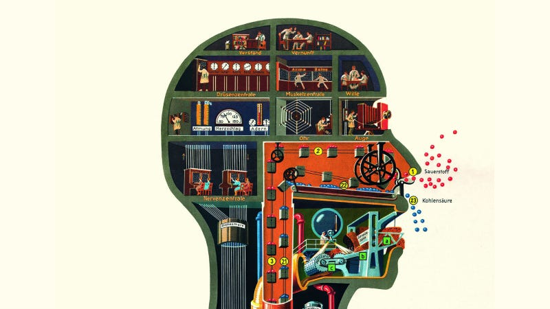 Illustration for article titled The Amazing Anatomical Diagrams of Fritz Kahn, Pioneer of Infographics