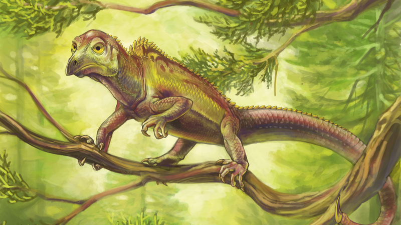 This Ancient Reptile Evolved a Weird, Bird-Like Head 100 Million Years Before Birds Did