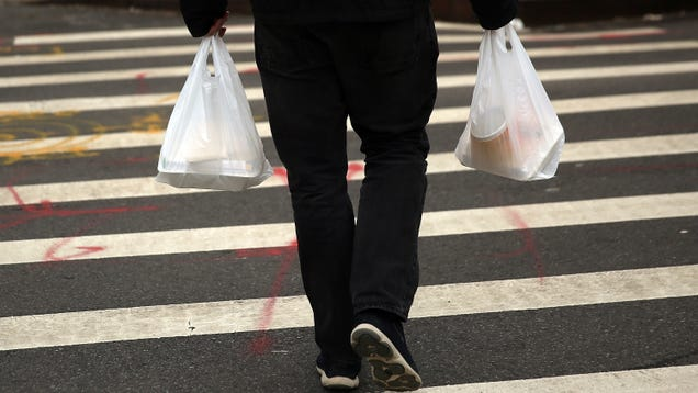 What Does an Equitable Plastic Bag Ban Look Like?