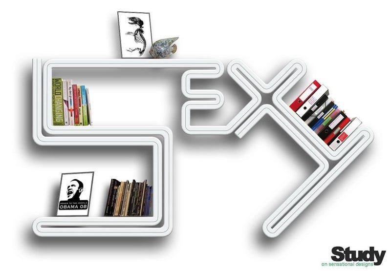 Illustration for article titled Sex Bookshelf Perfect For Novels, Pictures of Obama