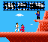 Illustration for article titled Which NES Classic is Truest to Fighting Style: Kung Fu, or Karate Champ?