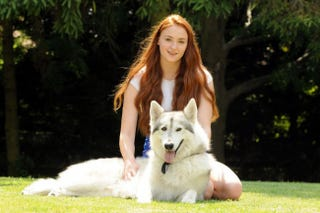 Illustration for article titled Sansa Stark's actress adopted her real-life direwolf
