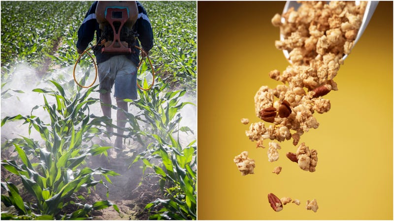 Illustration for article titled Great, our granola may have weedkiller in it