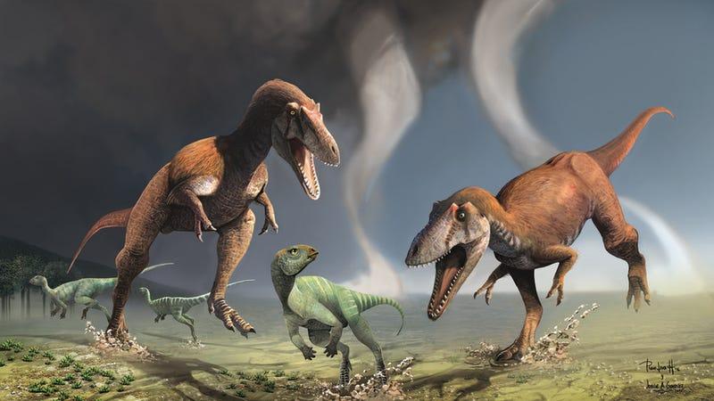 T rex var inte ett rovdjur