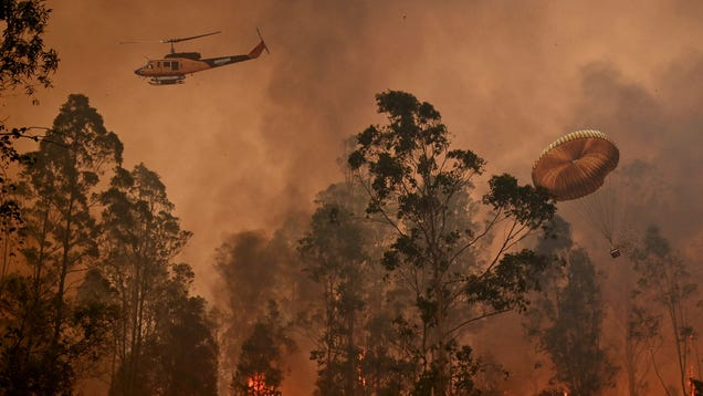 Jeff Bezos Donates $690,000 Directly Into Australian Fire