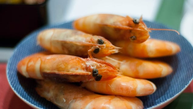 You Can and Should Eat Shrimp Shells