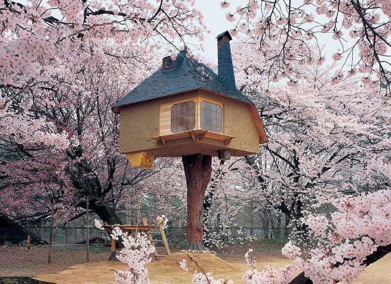 Las casas m s fascinantes construidas sobre los rboles for Hotel con casas colgadas de los arboles