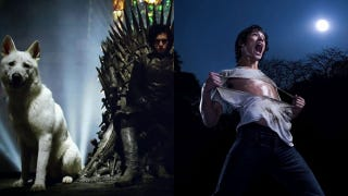 Illustration for article titled Which Sunday show are you more excited about: Game of Thrones, or Teen Wolf?