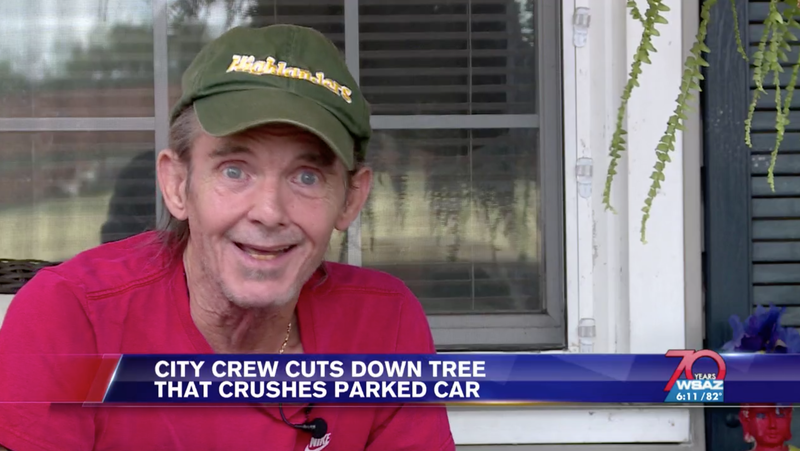 """Illustration for article titled West Virginia Man On Tree Crushing Local Student's Car: """"I Hate To Say It, But It Was Kind Of Cool"""""""