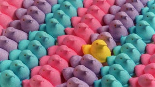 Illustration for article titled Here's What Happens When You Throw A Marshmallow Peep Out An Airlock
