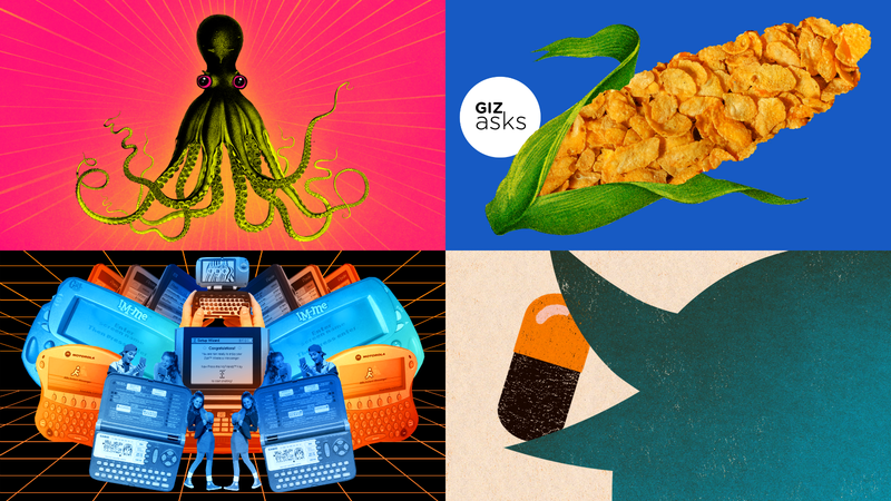 Illustration for article titled Octopuses on Ecstasy, Weight-Loss Scams, and Neutron Stars: Best Gizmodo Stories of the Week