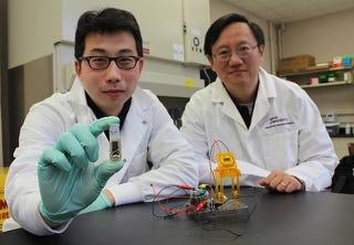 Crean una batería más densa que las de litio que funciona con azúcar