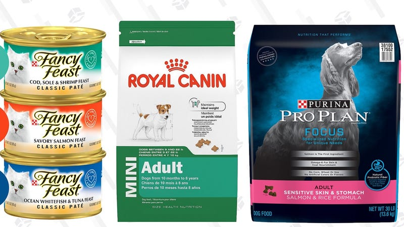40% Off First Pet Food Subscription | Amazon | Prime members only