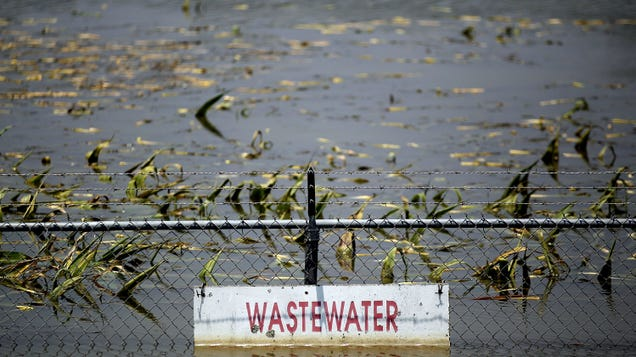 Great, Now We Might Have to Worry About Poop Spreading Coronavirus During Hurricane Season