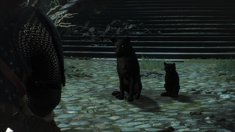 Image result for witcher 3 hearts of stone cat